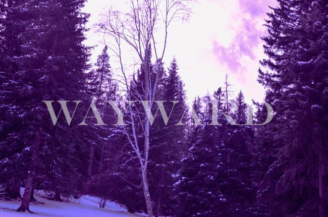 Wayward, you were...
